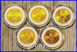 14 RARE Gold Onza Gold Libertad Collection 1981, 1991, 1992, 2015, & 2016