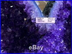 Amethyst Angel Wings Crystals Quartz Mineral Rock Geode Pirate Gold Coins