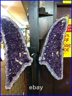 Amethyst Wings Crystals Quartz Mineral Geode Pirate Gold Coins Earth Treasure