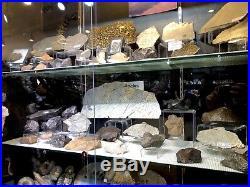 Meteorite Pirate Gold Coins Treasures Of Space Meteor Crater Artifact
