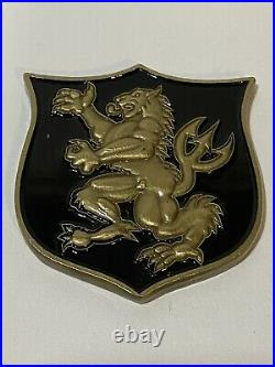 Navy Seal Team 6 DEVGRU NSW Gold Squadron Challenge Coin